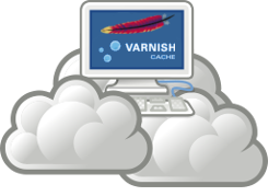 Apache varnish